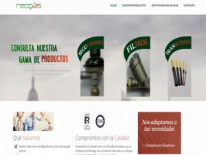 Diseño Web Recgas- Frikitek